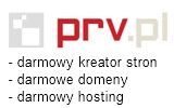 pol_pl_SZORTY-IRON-FIST-CHANGE-YOUR-SPOTS-1276_1